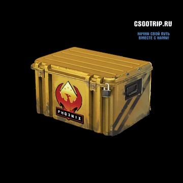 operation_phoenix_case