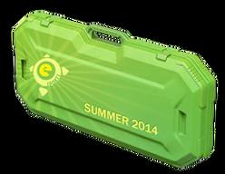 Кейс eSports Summer 2014