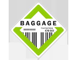 Коллекция Baggage